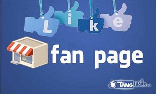 Tổng quát về like fanpage facebook - Cách tăng like fanpage facebook nhanh nhất